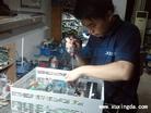 东洋VF64SDS变频器维修
